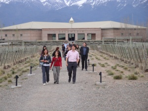 Visita a Salentein en Valle de Uco
